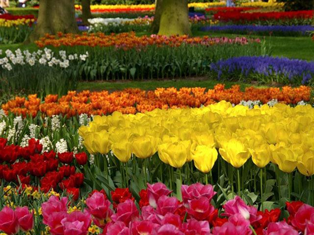 特集「花と緑あふれる庭園へ♪ 世界のガーデン10選」