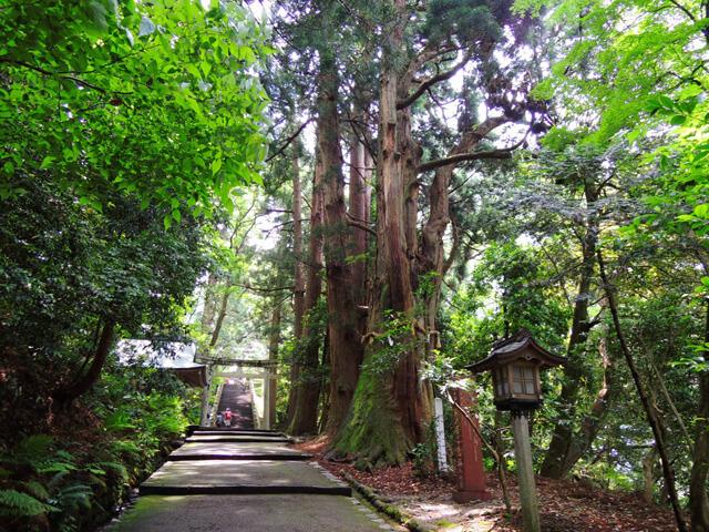 白山比咩神社 (白山ひめ神社)