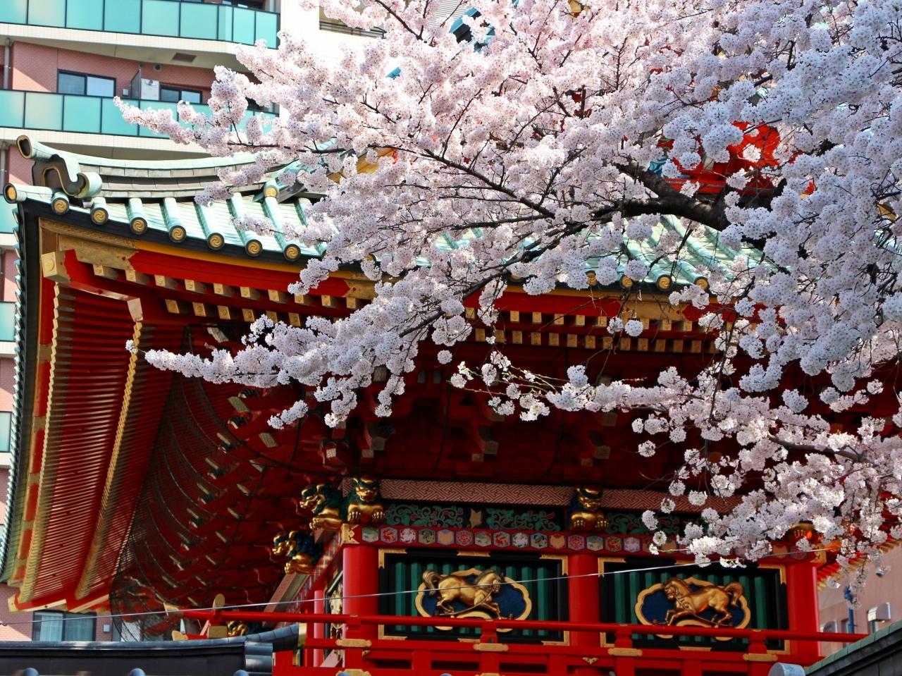 【2位】神田神社(神田明神) / 神田・神保町