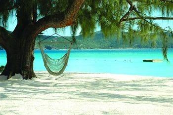 Guana Island 写真