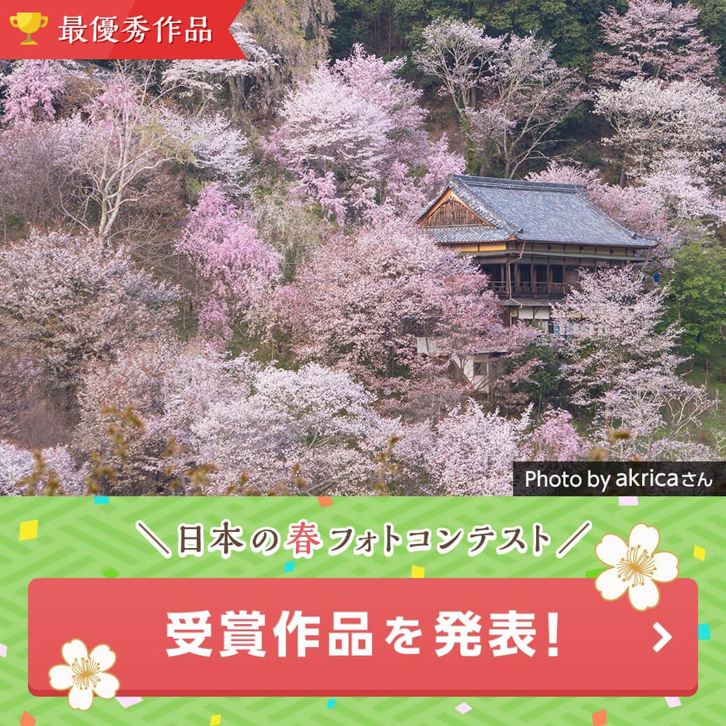 バナー画像:第2回 日本の春
