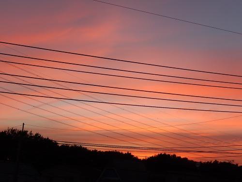 8月18日、ふじみ野市で素晴らしい夕焼けが見られました