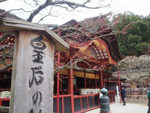 九州メシ食い旅行記-1日目- 福岡満喫。大宰府ともつ鍋と。