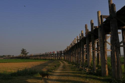 ポン友と二人でミャンマーの旅  最終日マンダレー、アマラプラ