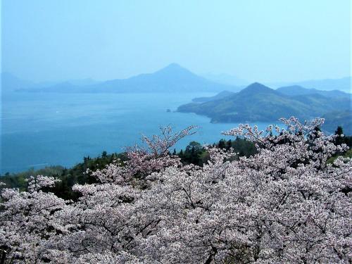 春のしまなみ海道2019