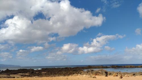 お正月ハワイ2018-3