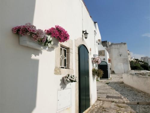 プーリア州北部ガルガーノ半島にあるアドリア海に面した丘の上の白い街「ペスキチ Peschici」へ