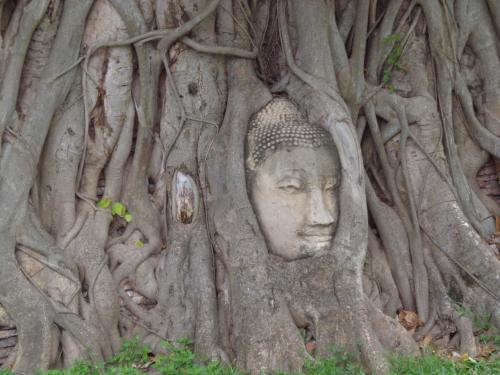 タイ~カンボジア4泊6日息子との二人旅行 アユタヤ編