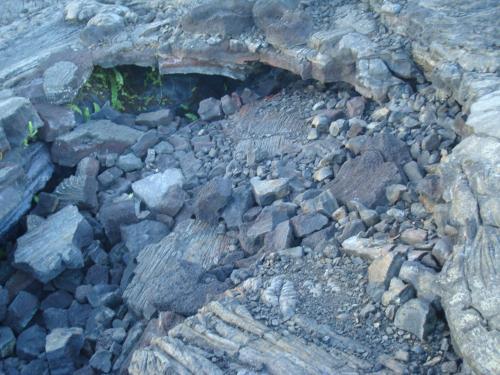 ハワイ島に直行便で行ってみた。キラウェア火山の溶岩台地でお弁当を食べる!