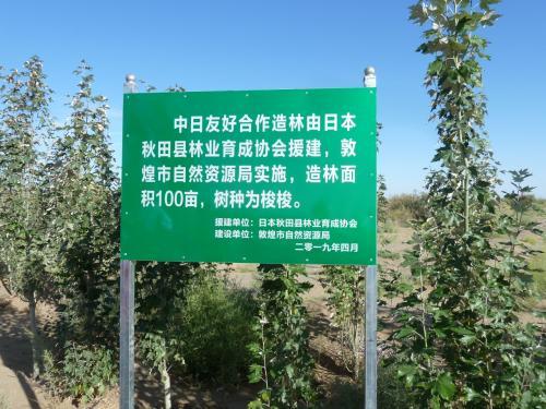 中国・甘粛省敦煌 砂漠の食い止めは秋田県が・・・・