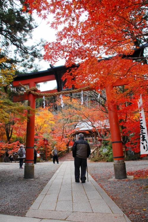 2019秋の紅葉散策①~京都亀岡・鍬山神社