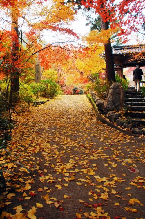 2019秋の紅葉散策②~京都亀岡・神藏寺
