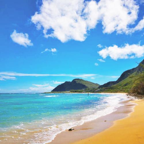 2020 家族ハワイ