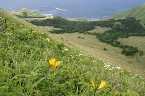 2008年 利尻・礼文島 旅行記 2