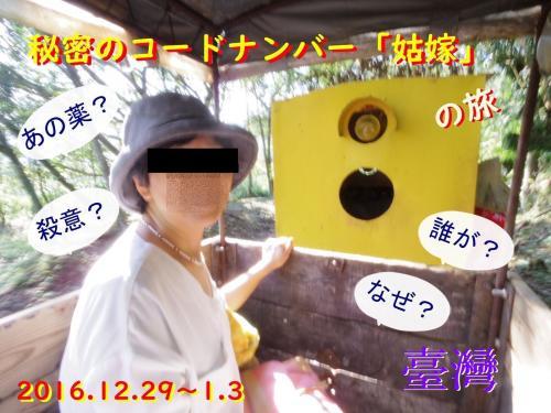 秘密のコードナンバー「姑嫁」 台湾 その2