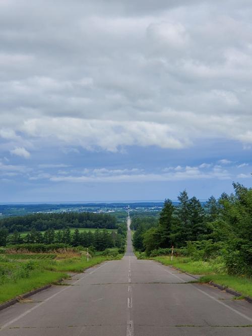とらべるまんwithコロナの北海道2020年 道は真っすぐがいい 6月28日 1/2