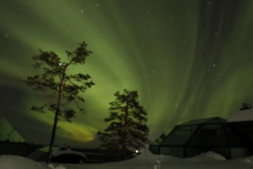 死ぬまでにオーロラを見たい~中年夫婦のフィンランド旅行記 その1  出発~レヴィ