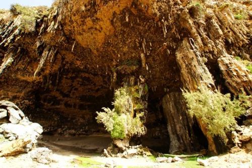 インド洋のガラパゴス!秘境ソコトラ島の旅⑦~ダグブ洞穴&ザヒーク砂丘 前編