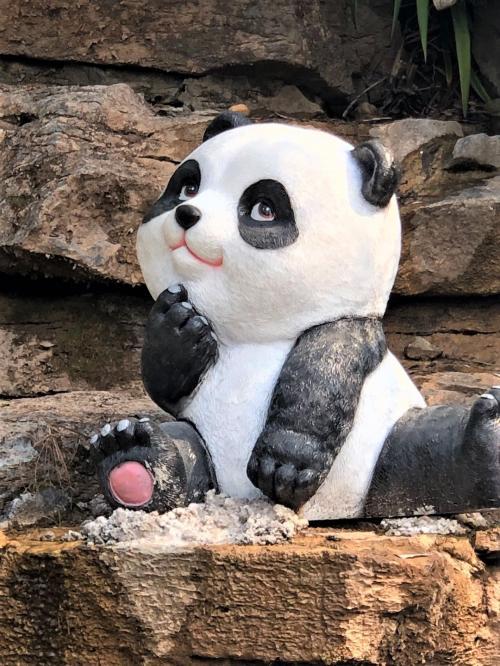 パンダを見に「長沙生態動物園」へ、行ってみると?。。。