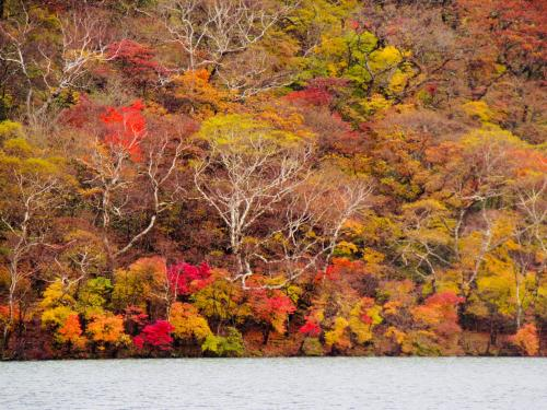 秋麗し 山の風