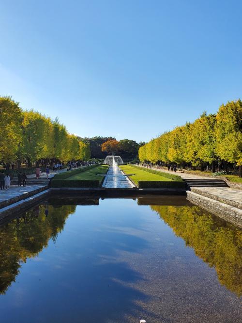 晴天に誘われ、昼下がりの昭和記念公園散歩