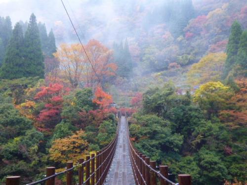 秋を彩る具だくさんの秘境『五家荘』 樅木の吊橋を独り占め