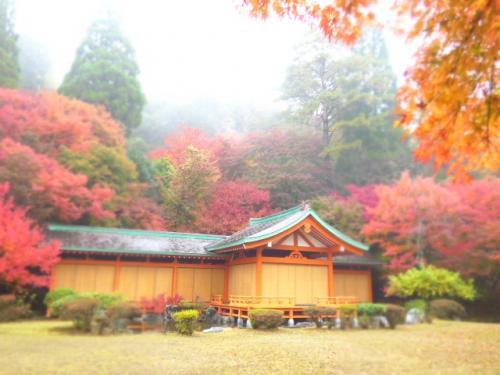 秋を彩る具だくさんの秘境『五家荘』 平家の里