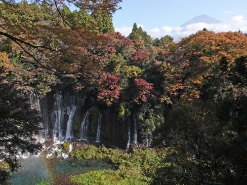 紅葉が見頃の田貫湖から白糸の滝へ 2020.11.15