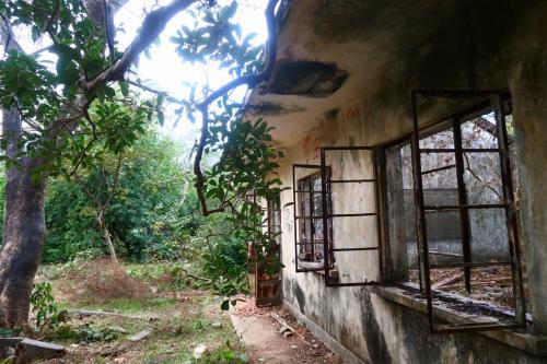 香港★元荃古道をハイキング 今回は1980年代に廃校になった蓮花山公立學校を見に
