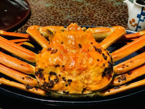 2021年3月 今年も蟹を食べに越前へ(^^)=3=3 & 金沢の温泉、ついでに宇宙人!