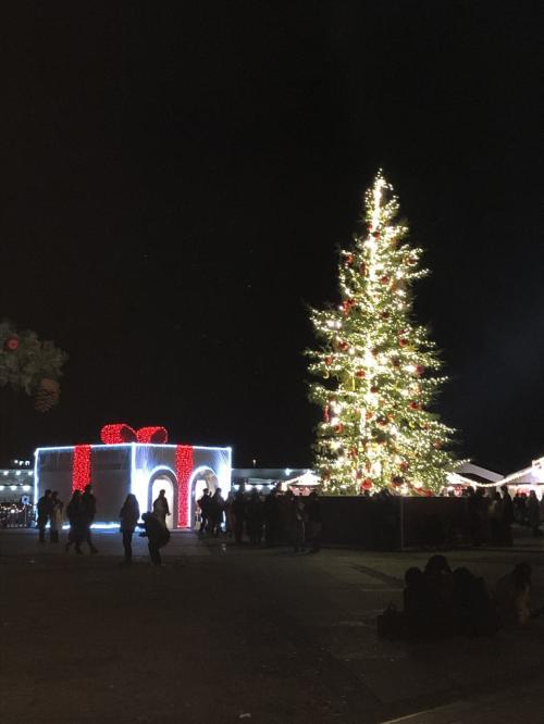 5・7歳児連れ、新横浜プリンスホテル宿泊&赤レンガクリスマス夜景