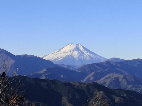初詣 高尾山