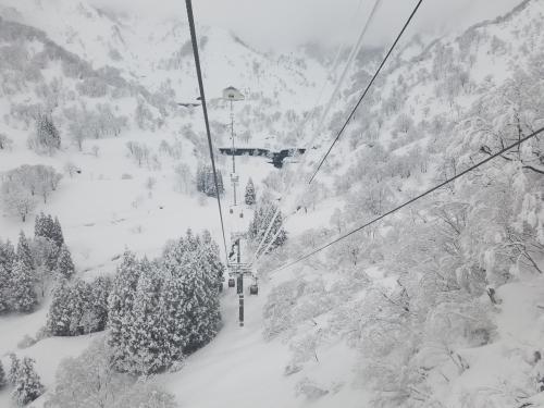2021スキー★アライリゾート