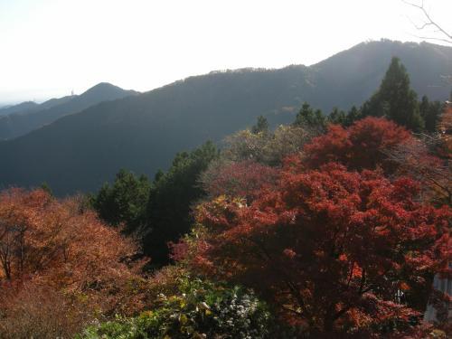 秋の御岳山ハイキング