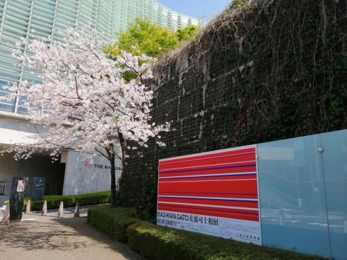 都心のミュージアムとお花見散歩(六本木~外苑前~千駄ヶ谷)