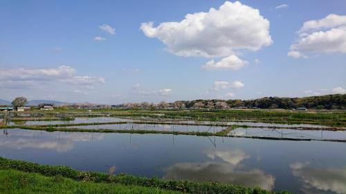 聖地巡礼:プティ・カスイチと記念日に偲ぶ