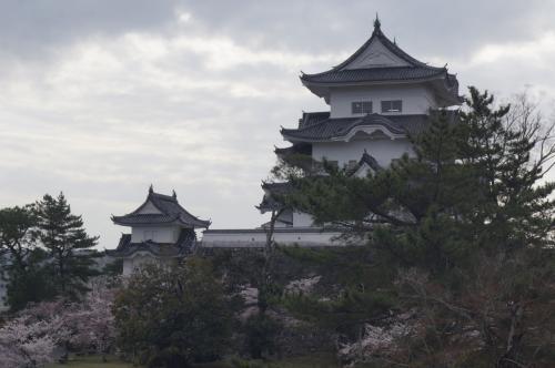 2021春 青春18きっぷで行く100名城巡りの旅 その1【松阪・伊賀上野】