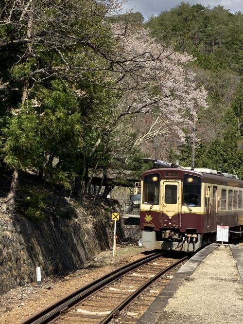 春のわたらせ渓谷鐵道に乗車