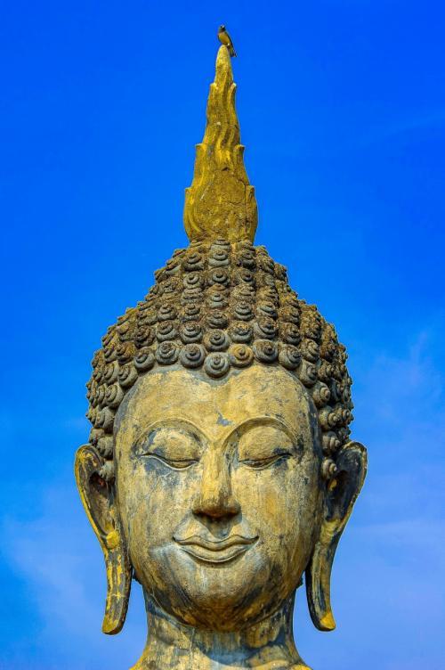 タイの遺跡を全部巡るつもりが、コロナの影響で北部だけで終わってしまった旅 その29 ワットマハタートを2時間堪能