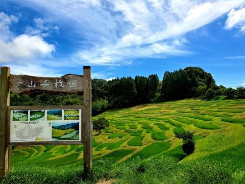 大山千枚田は綺麗!保田小学校は楽しい!鴨川緑水亭で過ごす短い夏休み