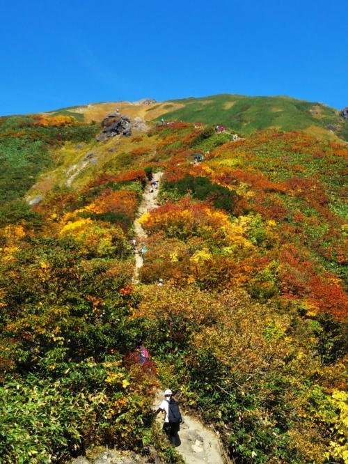 天気予報は晴れ。いざ、憧れの谷川岳へ!