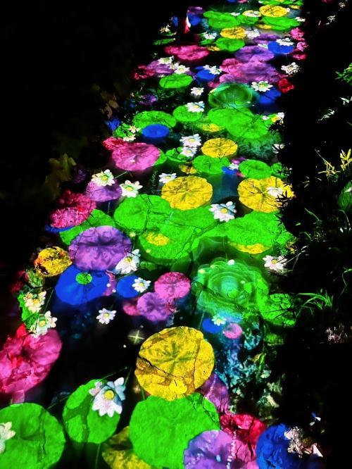 定山渓温泉(札幌市内) ネイチャールミナリエ