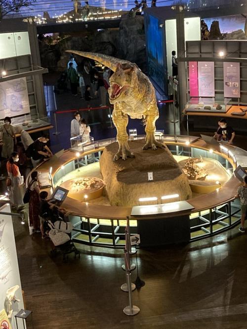 2021年10月北陸の旅 恐竜博物館、越前大仏、夕日の東尋坊、ランチは人気のパン屋さん