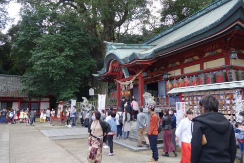 20.11023-1 別府 八幡朝見神社で、朝見マルシェって開催するってんで見物に