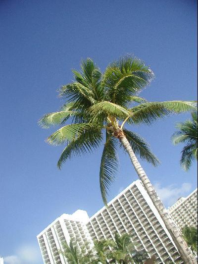 ウェディングin Hawaii Part 1