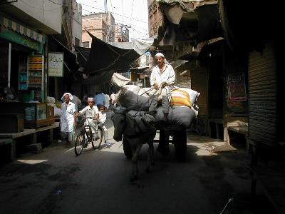 パキスタン世界遺産の旅