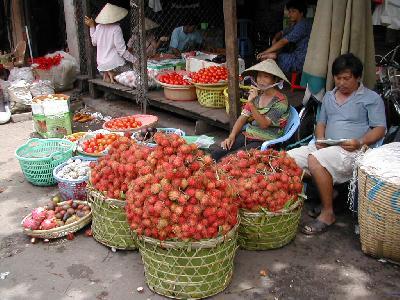 ベトナム縦断の旅2