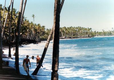 ハワイ島(ナニマウガーデンとキラウエア火山編)の旅