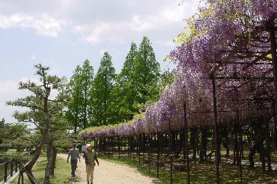 灌漑用の池のまわりは憩いの場@宇部常盤公園☆2004年4月24日
