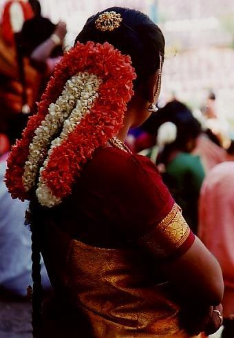 ★ちょっと昔のインド 雨季の終わりの一人旅(5) 寺院と象と婚礼のマドゥライ
